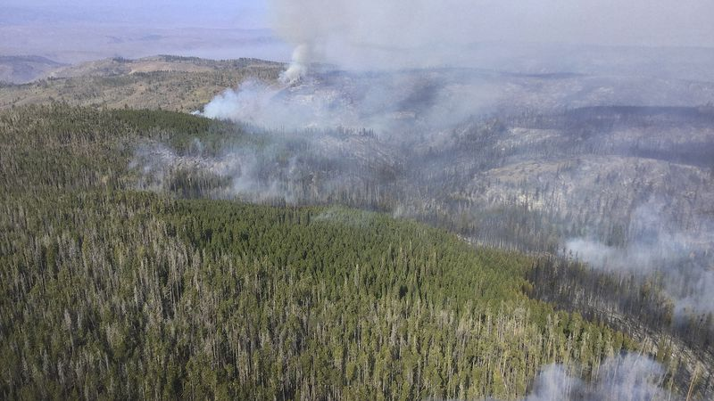 In this aerial photo provided by the U.S. Forest Service, smoke from a wildfire is in part of...