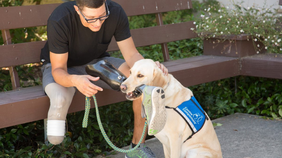 A Canine Companions service dog assisting their handler