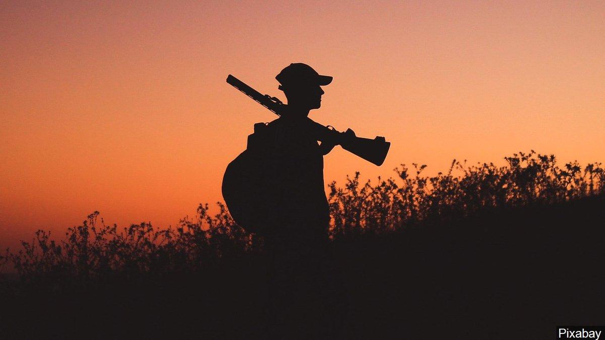 Generic hunting graphic