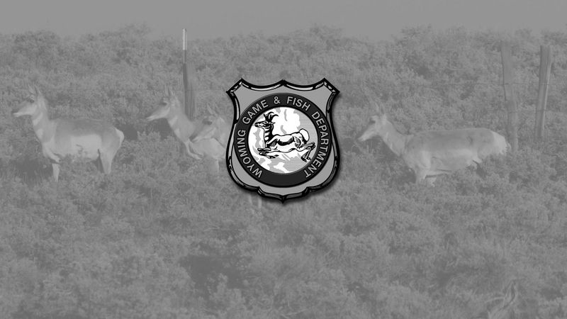 Wyoming Game and Fish logo