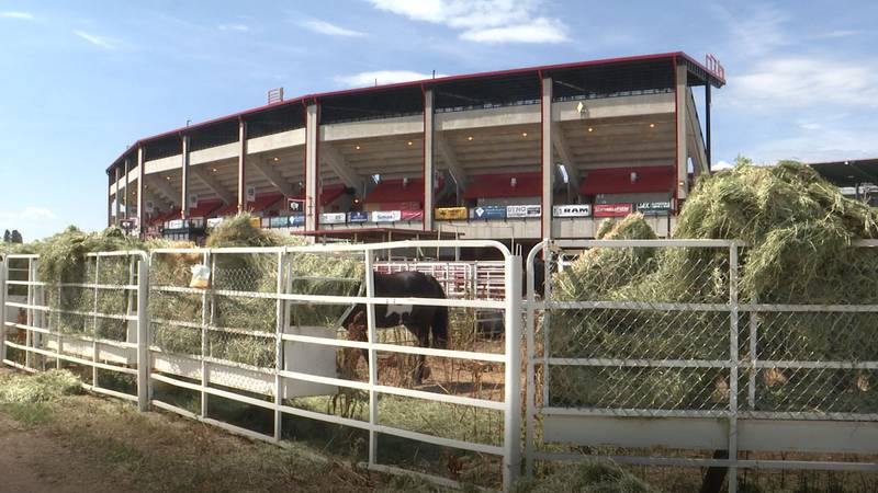 The Daddy of 'Em All Rodeo begins on Saturday afternoon, following the Grand Entry at 12:45 p.m.