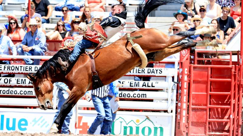 Tim O'Connell won the bareback riding title at Cheyenne Frontier Days in 2017 en route to his...