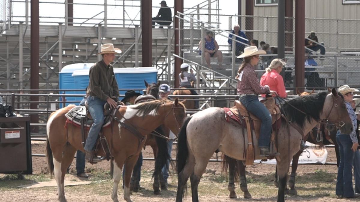 Laramie County Fair Horse Show