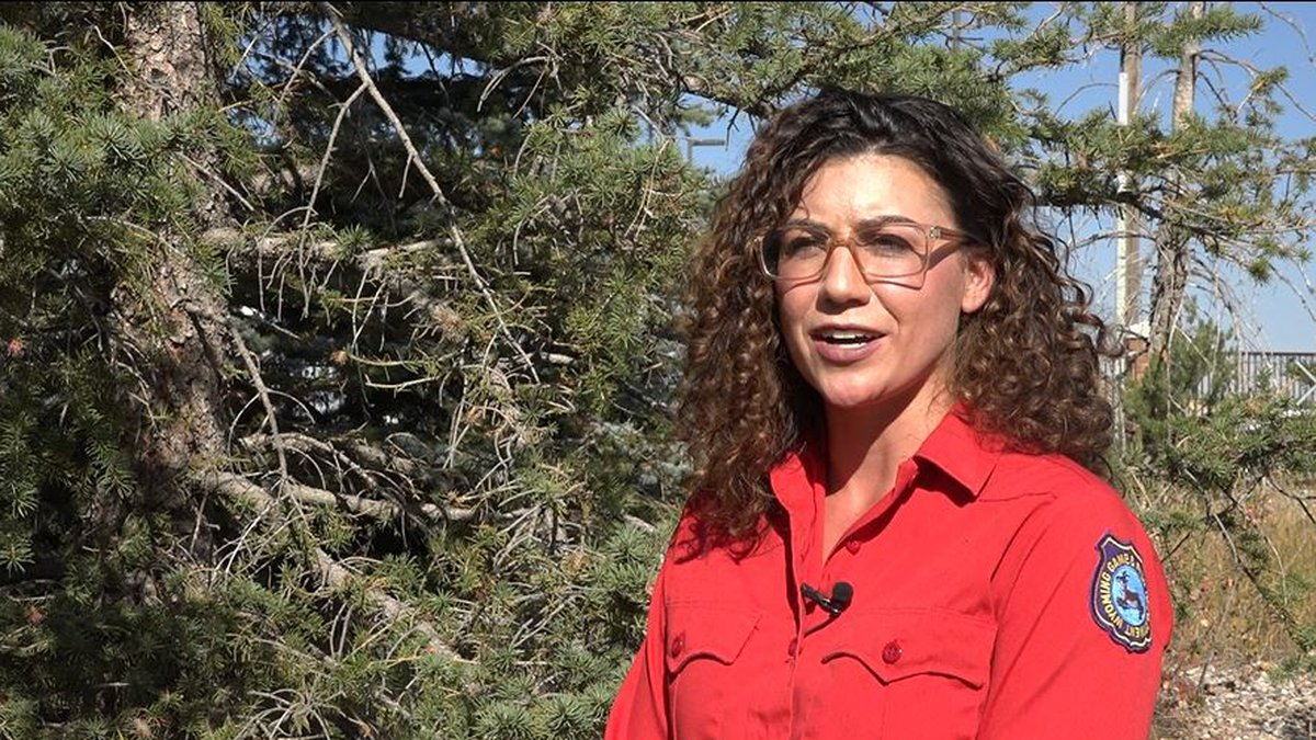 Wyoming Game and Fish Department wants hunting sample to check for diseases. Sara DiRienzo,...