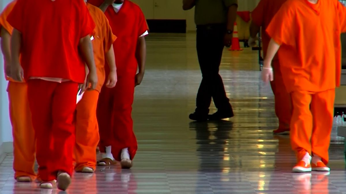 More inmates released to house arrest because of COVID-19, but some officers have concerns (Source: CNN)