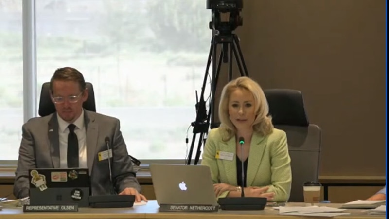 Interim Joint Judiciary Committee discuss juvenile justice