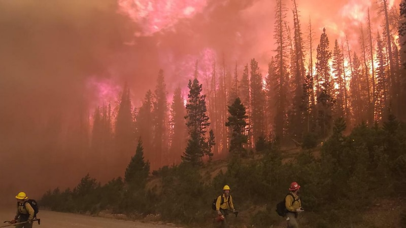 Mullen fire grows to 35,000+ acres, prompting more ecavuations