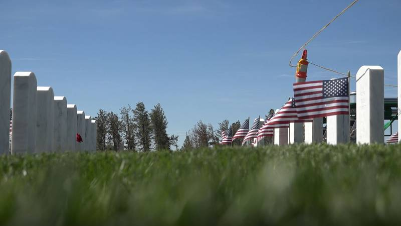 American Flags fly next to veterans burial sites at the Cheyenne National Cemetery on Friday...