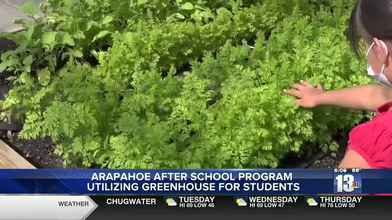 After school program student inspecting the carrot tops in Arapahoe, WY