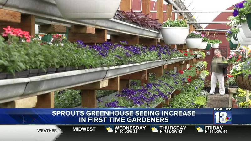Sprouts Greenhouse in Lander, WY