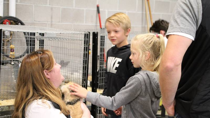 Wendy Pollock, Vet Science/Ag teacher, shows a bunny to future students!