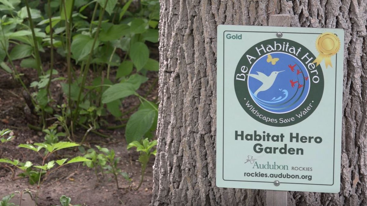 "A ""Habitat Hero"" sign in a Cheyenne residents garden on Thursday July 8, 2021."