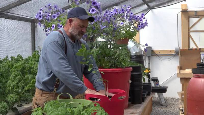 Dirk Gosnell of Lake View Gardens discusses lemon trees in Pavillion, WY