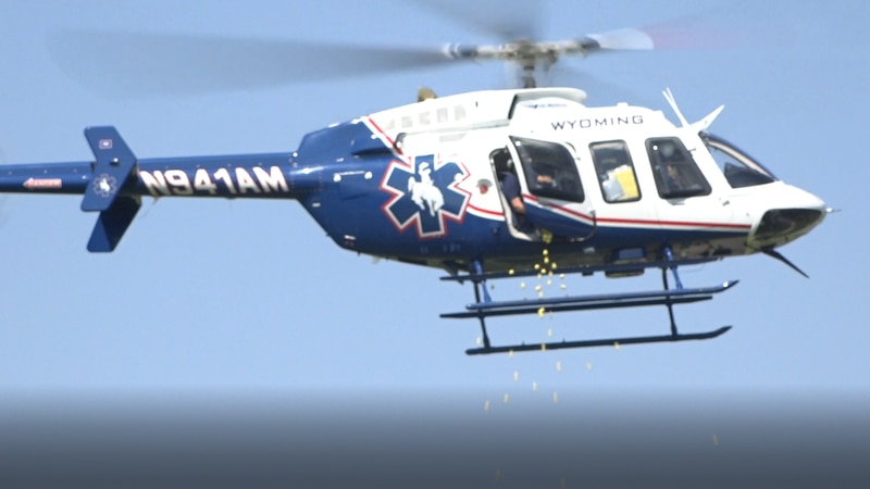 A helicopter drops golf balls onto Paradise Valley golf coarse on Sept. 3