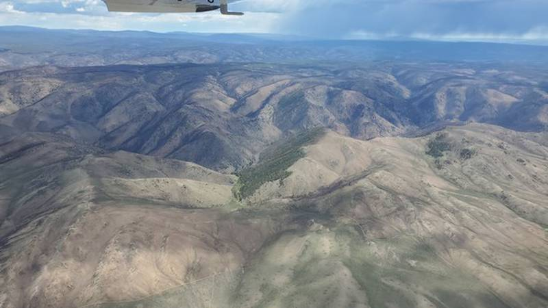 Laramie Region wildlife and fisheries biologists took part in a fixed-wing aircraft flight over...